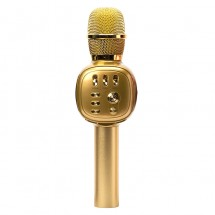Караоке-микрофон Charge K310 (Gold)